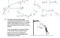 Projectile motion – shoot the monkey